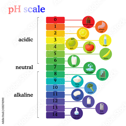 Photo pH scale diagram with corresponding acidic or alkaline values for common substan