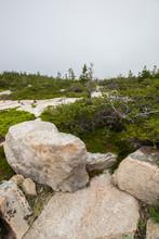 Schoodic Peninsula, Acadia Nat...