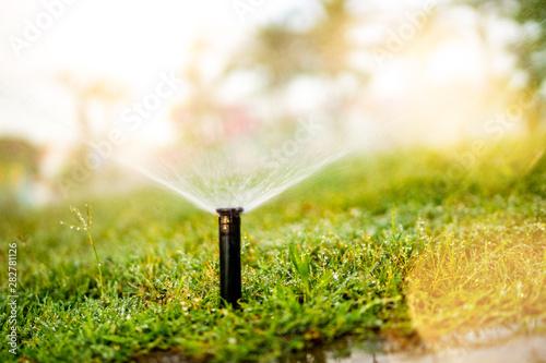 Obraz Close up details of automatic grass, lawn pop-up sprinkler - fototapety do salonu