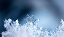 Winter Photo Of Snowflakes In ...