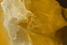 Hand Painted Gold Alcohol Ink Background. Abstract Delicate Yellow Texture. Contemporary Wallpaper.