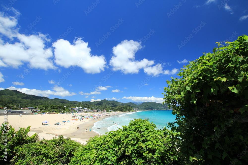 Fototapety, obrazy: 伊豆下田 夏の白浜大浜