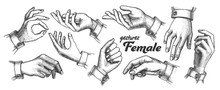 Collection Of Different Gesture Set Vintage Vector. Female Woman Hand Gesture Looks Like Holding Cup Coffee Or Bag, Cigarette Or Violin, Balloon Or Umbrella. Monochrome Illustration