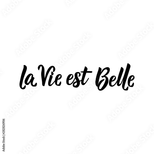 Translation from French: Life is beautiful. Vector illustration. Lettering. Ink illustration. La Vie est Belle.