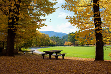 Lovely Autumnal Picnic Area Overlooking Local Sports Ground In The Popular Alpine Town Of Bright In North East Victoria, Australia.