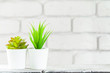 House plants in pots on white table at white brick wall with objects