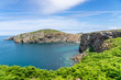 Just one of the many views whilst on a walk around Ramsey Island RSPB nature reserve
