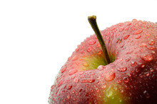Red Wet Apple In White Background