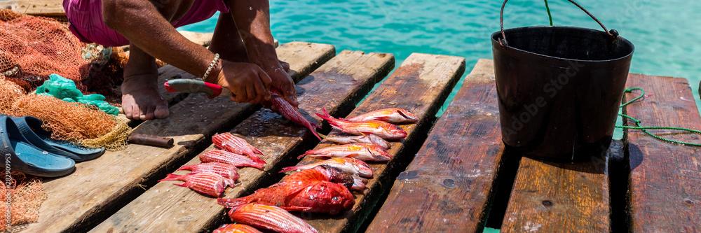 Fototapety, obrazy: Fisherman on a pier, panorama