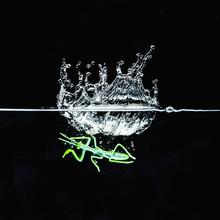 Mantis Water Splash