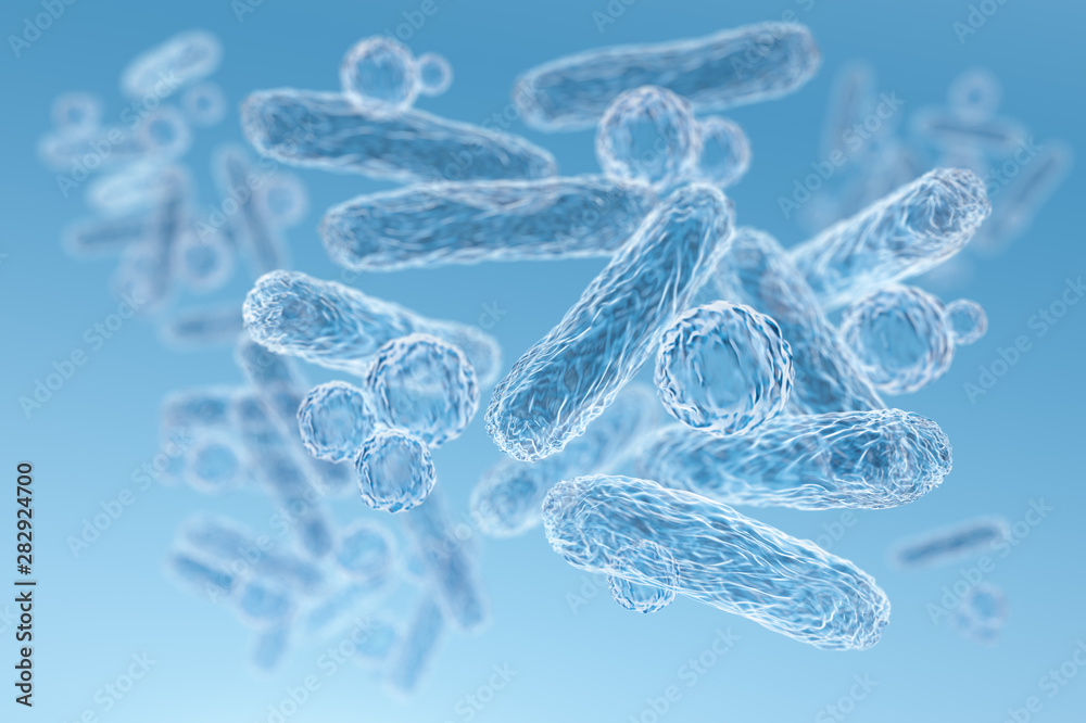 Fototapeta Enterobacteriaceae, gram-negative rod-shaped bacteria, part of intestinal microbiome and causative agents of different infections, 3D rendering. Escherichia coli, Klebsiella, Enterobacter and other