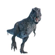 Tyrannosaurus Rex Walking Around