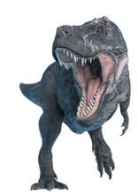 Tyrannosaurus Rex Hunting Down