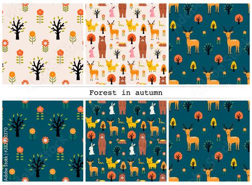 Obraz na plátně  秋の森パターン