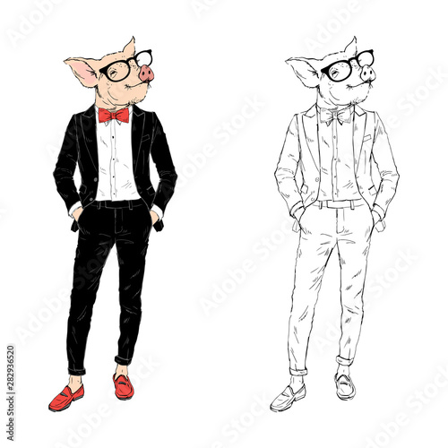 Pig gentleman dressed up in tuxedo. Anthropomorphic Animal zodiac sign character. Chinese New Year Wall mural