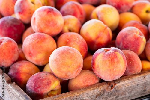 Obraz na plátně Yellow Summer Peaches