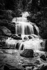 Fototapeta Popularne Waterfall Black and White