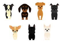 Set Of Seven Different Dogs