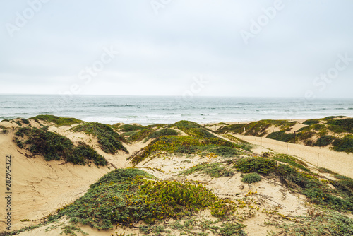 Sand Dunes and Ocean View. Pacific Coast, California
