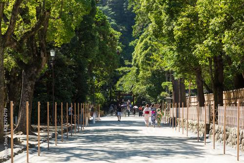 Photo (神奈川県ー風景)鶴岡八幡宮東鳥居から続く参道風景3
