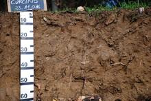 Profilo Stratigrafico Di Un Terreno