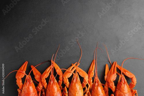 Obraz na plátně  lobsters on black background top view