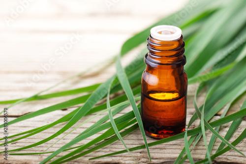 Fototapeta lemongrass essential oil in the bottle, with fresh lemongrass leaves, on the wooden table obraz