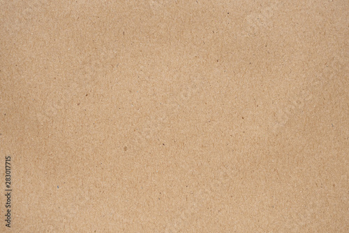 Photo sur Toile Les Textures Brown recycle paper bag texture background