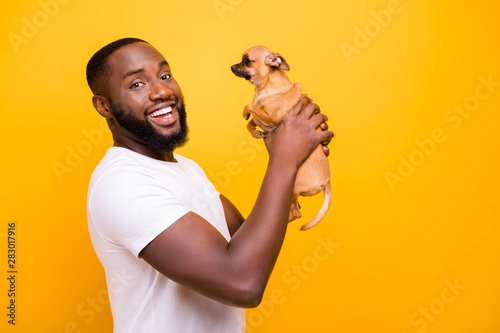 Fotografia  Photo of dark skin guy training little pet obedience wear casual outfit isolated