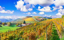 Beautiful Autumn Landscape With Vineyards In Tuscany. Famos Wine Region Of Italy