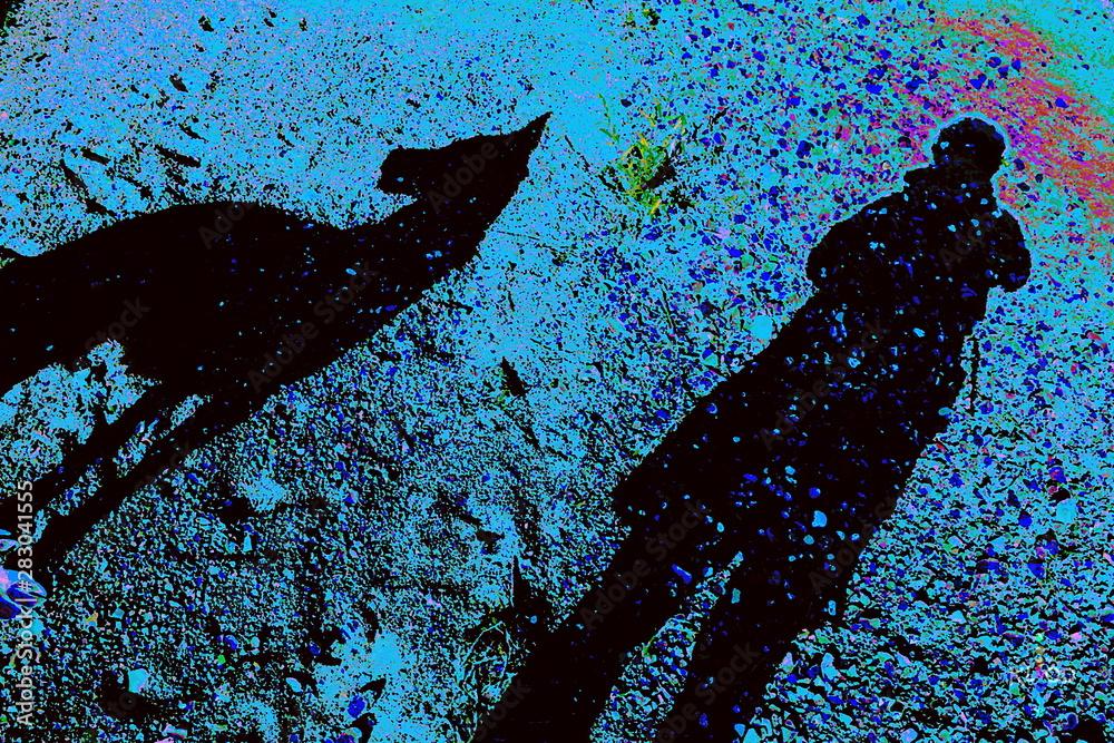 Fototapeta shadows of a dog and a silhouete