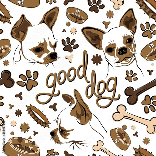 plakat Seamless pattern with Chihuahua and dog accessories