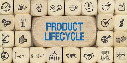 Fotografie, Obraz Product lifecycle