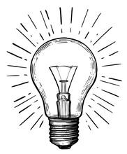 Vintage Light Bulb In Sketch S...