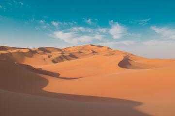 Fototapeta na wymiar UAE. Desert  landscape