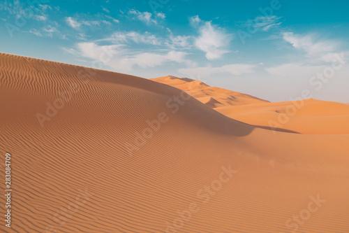 Foto op Aluminium Koraal UAE. Desert landscape