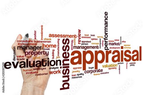 Appraisal word cloud Wallpaper Mural