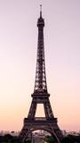 Fototapeta Fototapety z wieżą Eiffla - Eiffel Tower at Sunrise