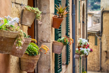 Beautiful Courtyard Decorated ...