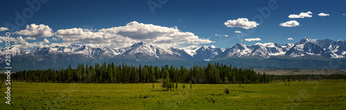 the panorama of the Chui ridge Altai, Russia, June Canvas Print