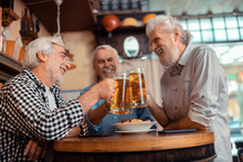 Best Friends Feeling Cheerful While Drinking Beer