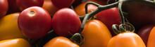 Panoramic Shot Of Yellow, Red And Cherry Tomatoes