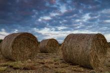 Freshly Cut Hay Bales In A Field At Dusk, Rural Ireland