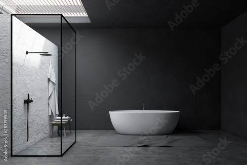 Cuadros en Lienzo  Gray bathroom interior, shower and tub