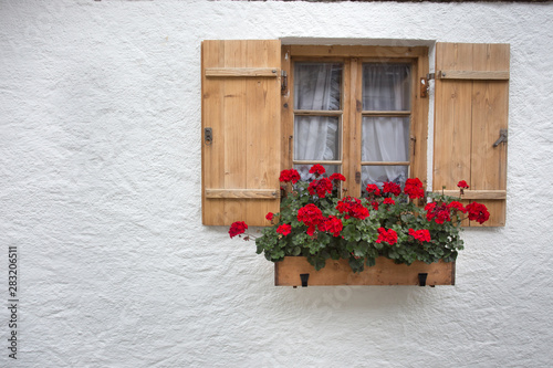 Poster de jardin Montagne Red geraniums on wooden window