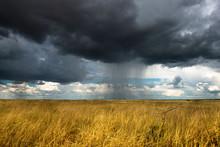 Namibie, Etosha Park