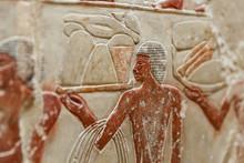 Scenes In Saqqara Necropolis, ...