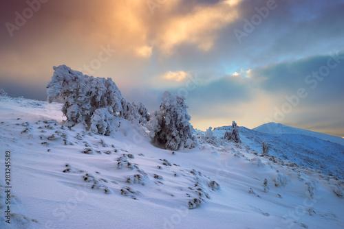 Photo Winter in Carpathian Moumtains