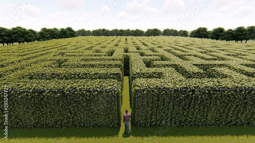 Fotomural Man walking into big labyrinth 3D rendering