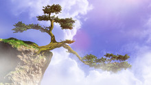 Old Tree Growing On A Cliff, Fairy Tale Landscape